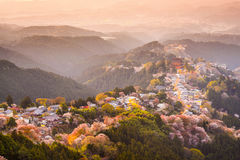 Yoshinoyama, Japan im Frühjahr stockfotografie