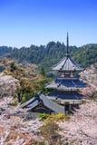 Yoshinoyama, Japan at Kinpusenji Pagoda. Yoshinoyama, Japan at Kinpusenji Temple Pagoda Stock Photo