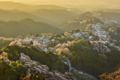 Yoshinoyama, Japan Royalty Free Stock Photos