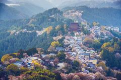 Yoshinoyama, Japan Royalty Free Stock Photography