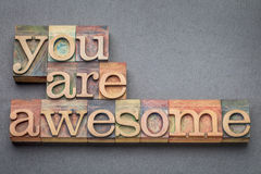 Free You Are Awesome In Wood Type Stock Photos - 77683433