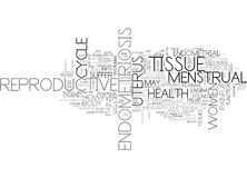Are You Aware That You Suffer From Endometriosis Word Cloud Royalty Free Stock Photo
