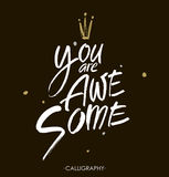 You are awesome.  Brush calligraphy. Handwritten ink lettering. Hand drawn design elements. Royalty Free Stock Photos