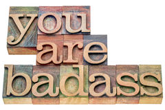 You are badass word abstract. You are badass - isolated word abstract in letterpress wood type printing blocks stained by color inks royalty free stock image