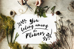 You Belong Among The Flowers Decoration Concept Royalty Free Stock Images