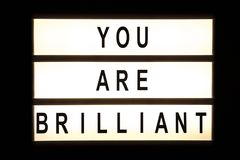 You are brilliant hanging light box. Sign board Stock Images