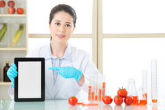 You can discover genetic modification food information on intern Royalty Free Stock Photo