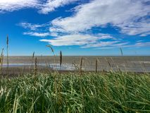 Grass and Wild Arctic Beach. You can almost see the curve of the Earth this far north. Wait... is that Russia on the horizon? Nope, just a windy day on a beach royalty free stock photos