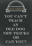 You Can't Teach An Old Dog New Tricks Hand Written On A Chalkbo Stock Images