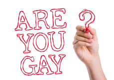 Are You Gay written on wipe board Royalty Free Stock Photos