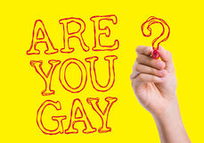 Are You Gay written on wipe board Royalty Free Stock Images