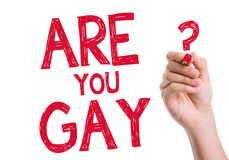 Are You Gay written on wipe board Stock Images