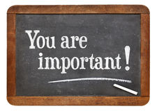 You are important on blackboard Royalty Free Stock Photos