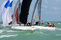 You Only Live Once (YOLO) at the Melges 20 World Championships Stock Image