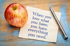 When you love what ... inspiraitonal quote on napkin royalty free stock images