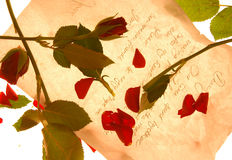 You loved me. Love letter with rose petals Royalty Free Stock Photography