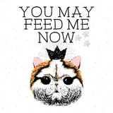 You may feed me now, hand drawn card and lettering calligraphy motivational quote Royalty Free Stock Image