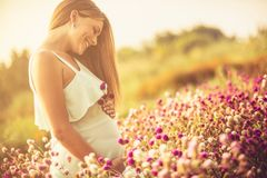 You are my flower in life. Smiling pregnant woman on meadow. Close up. Copy space royalty free stock image