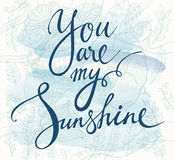 You are my sunshine Royalty Free Stock Image