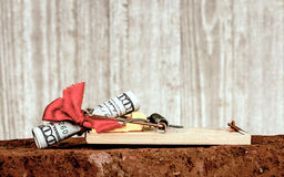 You Never Know What You`ll Catch. Closeup of a mouse trap set atop of a red brick with a hundred dollar bill rolled up in side a red bow set on the mouse trap Royalty Free Stock Image