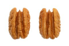 Are you nuts?. A walnut isolated in white Royalty Free Stock Photo