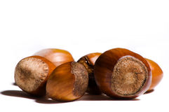 Are you nuts ?. Group of brown nuts isolated on white background Stock Photography