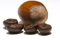 Are you nuts about coffee ? Stock Images