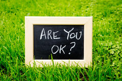 Are You OK - Blackboard on grass Stock Photos