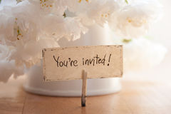 You're Invited. Hand lettering, white flowers on background, wedding invitation Royalty Free Stock Photography