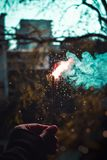 You set alight, in my heart and mind, the most beautiful chaos. Sparkles, bokeh, trees Royalty Free Stock Images