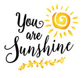 You are Sunshine. Inspiring encouragement typography art design poster with sunshine and laurel accent royalty free illustration