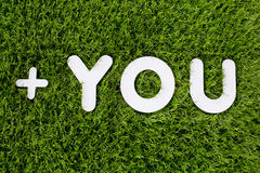YOU text made of white wood  design element on grass backg Stock Photo