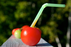 Fresh Tomato Juice? Royalty Free Stock Photo