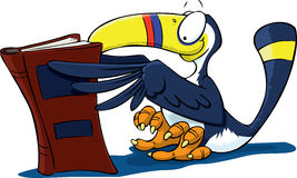 You Toucan Read Stock Image