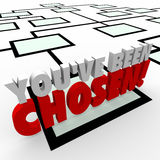 You Ve Been Chosen 3d Words Company Organization Chart Promotion Stock Images