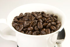 You want some?. A close up of a cup of coffee beans royalty free stock photography
