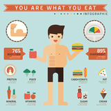 You are what you eat infographic royalty free illustration