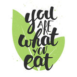 You are what you eat, modern ink brush calligraphy with leaves. Stock Images