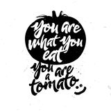 You are what you eat. You are a tomato. Humorous quote with sketch of tomato. Healthy food themed joke Royalty Free Stock Image