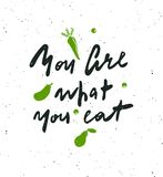 You are what your eat. Hand lettering poster royalty free illustration