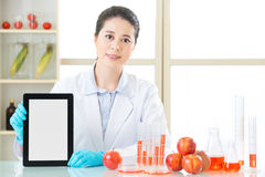 You will find genetic modification food information on internet Royalty Free Stock Photography