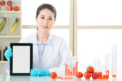 You will find genetic modification food information on internet Stock Image