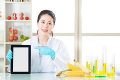 You will find genetic modification food information on internet Royalty Free Stock Image