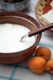 Youghurt en un tazón de fuente Fotos de archivo libres de regalías