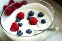 Yougurt Photo libre de droits