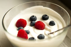 Yougurt Photo stock