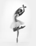 Youn Caucasian ballet dancer on a light background. Black and white image of young beautiful ballet dancer isolated over white background Stock Image