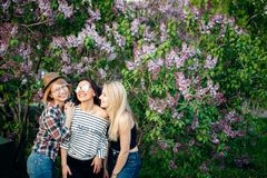 Three confident casual women standing at park and looking at camera stock photos