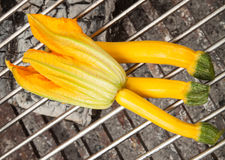 Round yellow zucchini on grill Stock Photography