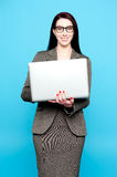 Young active businesswoman working on laptop Stock Photo